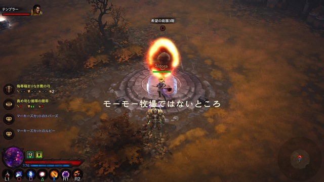 Diablo III_ Reaper of Souls – Ultimate Evil Edition (Japanese)_20191024202617 - コピー.jpg