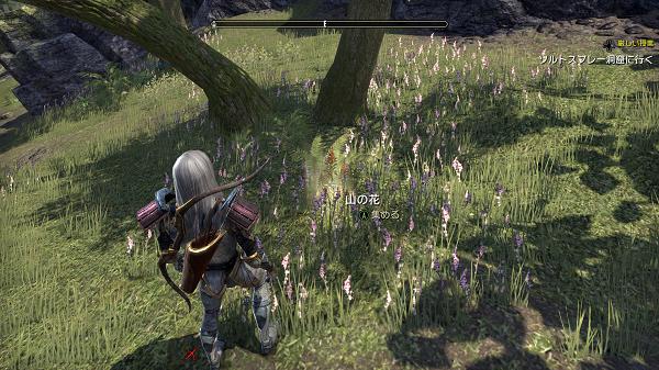 Elder Scrolls  Online Screenshot 2020.07.12 - 22.24.06.82.png