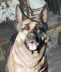 Fallout 4_20180824212248.jpg